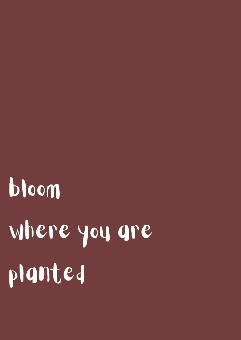 Kaart Bloom where you are planted