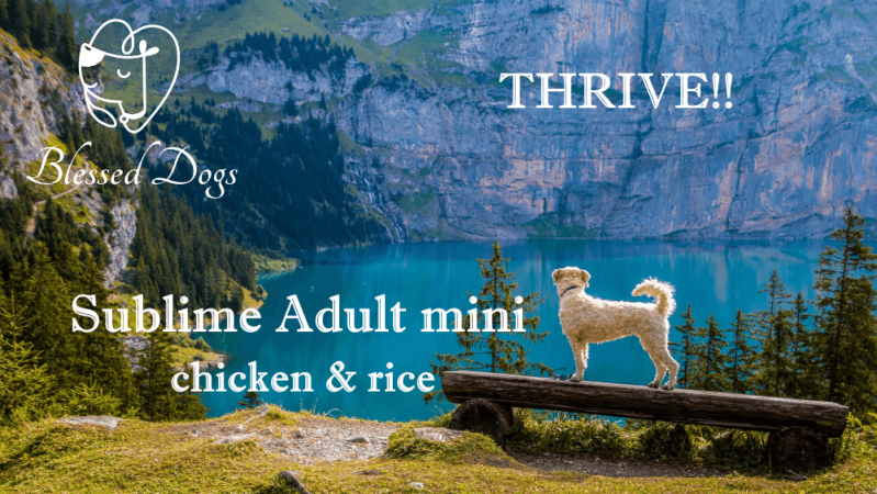 Thrive!! 20kg Sublime Adult Mini chicken & rice