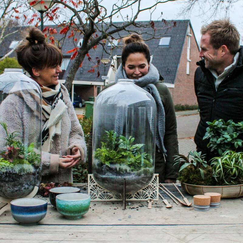 Workshop Ecosysteem maken Do 19 September 19:00-21:30u Flowers and More - Papendrecht