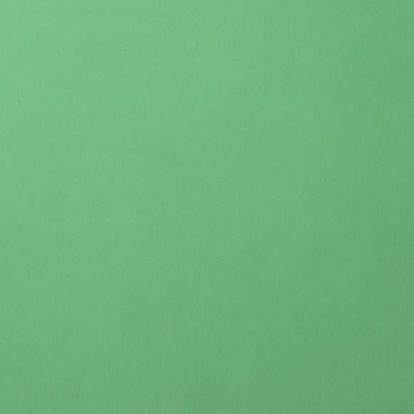 Florence Cardstock smooth 30,5x30,5cm Emerald (2926-058)