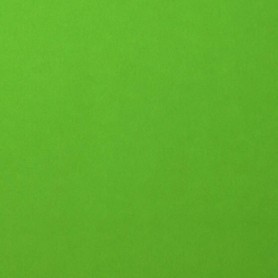 Florence Cardstock smooth 30,5x30,5cm Frog (2926-074)